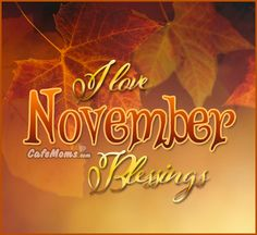 I Love November Blessings Graphic plus many other high quality Graphics for your Facebook profile at CafeMoms.com.