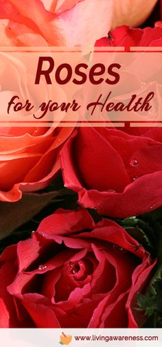 Roses for Your Health *   Better Living through healthy choices. Herbology and Herbal Use/Education.