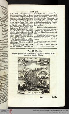 1719 - Valentini, Michael Bernhard - Viridarium Reformatum