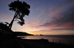 Meadfoot Sea Road Sunrise - in Explore #130 by rosiespoonerphotos, via Flickr