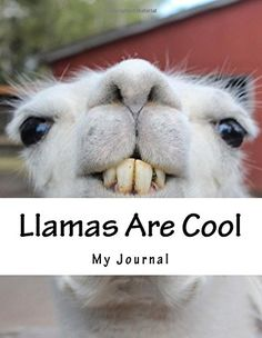 Large Size Notebook/Journal: x 11 COOL LLAMA Glossy Cover. A notebook featuring a cool Llama on the cover. Use this notebook/journal to write down your thoughts and ideas. There are 110 lined pages waiting to be filled with your words! My Journal, Journal Notebook, Journals, Indie Books, Cool Notebooks, Lined Page, Llamas, Cool Stuff, Animals