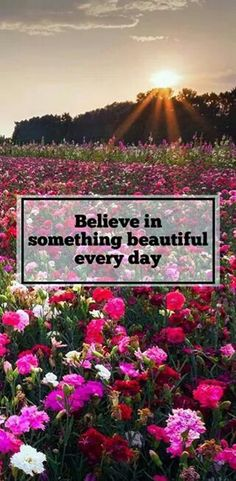 Believe in something beautiful everyday