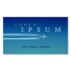 Pilot Aviator Stewardess Plane Sky Business Card