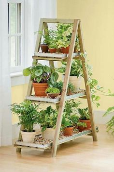 Coloque as plantas verdes corretamente no pequeno apartamento! For the reason that plantas ornamentais para Vertical Gardens, Small Gardens, Outdoor Gardens, Indoor Outdoor, Outdoor Living, Outdoor Planters, Pallet Planters, Modern Gardens, Diy Planters