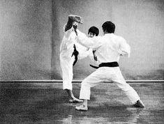 Resultado de imagen de haiwan karate