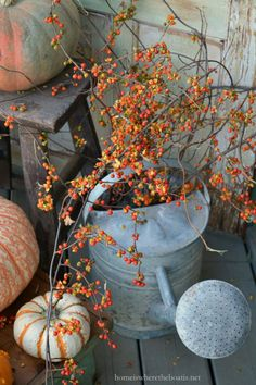 Watering can with Bittersweet vine| homeiswheretheboatis.net #PottingShed #fall