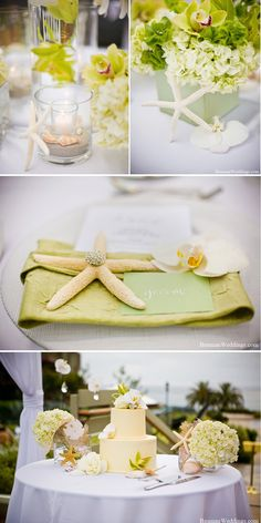 Decorate your beach wedding with high-quality faux flowers, like cream green hydrangeas, and decorations from Afloral.com.  Afloral.com has starfish, vases, faux orchids and more.  PInned by Afloral.com from http://aileentran.com/blog/2010/12/11/darling-details-starfish/