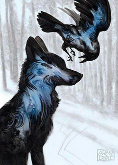 Raven and wolf                                                                                                                                                                                 More