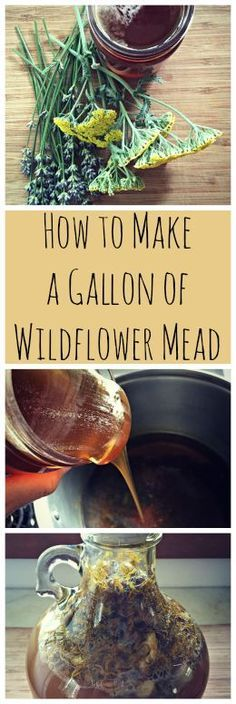 How to Make Wildflower Mead~ A one gallon mead recipe with flowers from your yard! http://www.growforagecookferment.com
