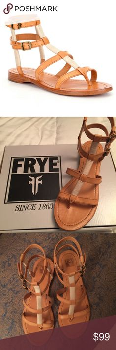 Authentic Frye Gladiator Sandals Beautiful Frye leather sandals. Color cognac. Size 8. Brand new in box. Frye Shoes Sandals