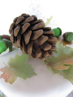 gum paste pine cones for the cake!?