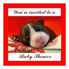 Baby Shower Personalized Invitations