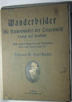 Catawiki Online-Auktionshaus: Ernst Haeckel - Wanderbilder Die Natur der Tropenwelt, Ceylon & Insulinde  - 1905