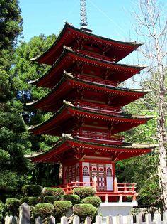 Japanese tea garden in golden ...