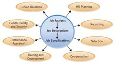 Job Analysis and HR Activities - what is human resource ?