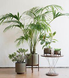 case study modernica planter - Google Search