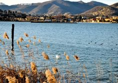 Hotel Ulivi, Paratico, Lago d'Iseo | Dintorni