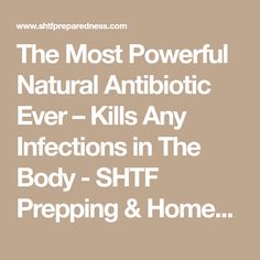 The Most Powerful Natural Antibiotic Ever – Kills Any Infections in The Body - SHTF Prepping & Homesteading Central
