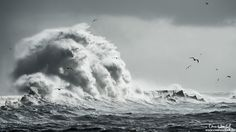 Xaver - Sturm auf Helgoland © Uwe Hasubek mit NIKON D4 +AF-S Nikkor 70-200mm f/2.8G ED VR II bei 280mm, f7.1, 1/1600, ISO 100, -5/3EV