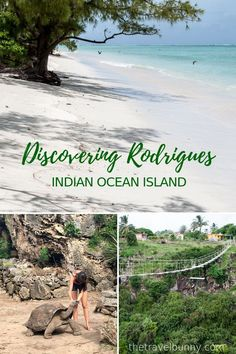 Discovering Rodrigues Island in the Indian Ocean - the magical island you've never heard of with powder white beaches, turquoise seas, lush green scenery and the friendliest of people Find out why you should go to Rodrigues Island #RodriguesIsland #Mauritius #Island
