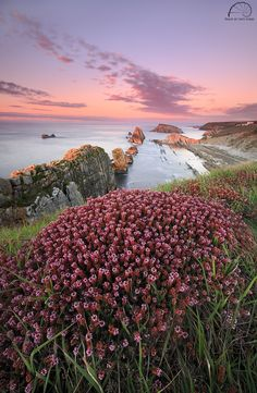 'LA VIE EN ROSE' by Raquel de Castro on 500px -- Cantabria, Costa Quebrada