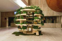 Длиной примерно в девять футов, Growroom позволяет выращивать растения в закрытом помещении.