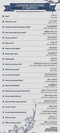 Infographic: common questions in Japanese part 3
