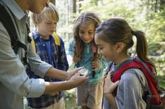 Discover the benefits of homeschool field trips, along with planning tips and field trip destination ideas.