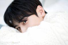 Photo album containing 20 pictures of ASTRO Close Up, Cha Eunwoo Astro, Lee Dong Min, Astro Fandom Name, Dream Boyfriend, Korea Boy, Boy Photography Poses, Sanha, Cha Eun Woo