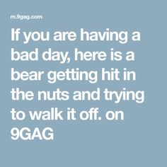 If you are having a bad day, here is a bear getting hit in the nuts and trying to walk it off. on It hurts mother Fu**ER, doesn't it. Mexican Word Of Day, Mexican Words, Funny Vid, Hilarious, Science Jokes, Best Pens, Read Later, Having A Bad Day, Pranks