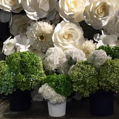 Gone cray on these gorgeous monsters. There's more that wouldn't fit in my picture! #BouquetGarni #antiquegreen #white #hydrangeas #fromHolland #flowershop #thefloraldesigner #BIG
