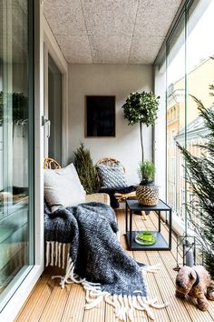 Véranda d'appartement, ambiance cocooning. #Interiorgarden