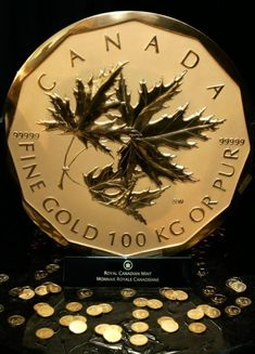 The Million Dollar Coin it was introduced in The coin weighs 100 kg and is per cent pure. Canadian Coins, Canadian History, Bullion Coins, Gold Bullion, 1 Million Dollar, Gold Money, Gold And Silver Coins, World Coins, Dollar Coin