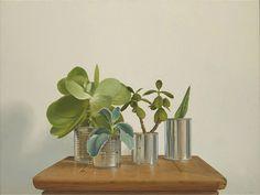 Amazing still life paintings: John Honeywill Country Paintings, Hyperrealism, Australian Artists, Still Life, Amazing, Plants, Image, Plant, Planets