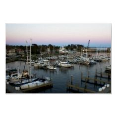 Oriental NC Marina Tilt Shift  This Image was captured in Oriental NC Looking down at the Marina. It was just before sunset. A Tilt Shift effect was used