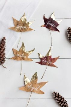 Gold Dipped Leaves: Dog-eared in gold leaf, these simple place cards require little more than collecting a freshly-fallen batch of leaves. Click through for more DIY place card ideas perfect for Thanksgiving. Thanksgiving Diy, Thanksgiving Place Cards, Thanksgiving Table Settings, Thanksgiving Tablescapes, Cheap Thanksgiving Decorations, Thanksgiving Table Centerpieces, Thanksgiving Cupcakes, Friends Thanksgiving, Thanksgiving Pictures