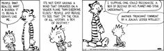 Calvin and Hobbes - Calvin describes the burden of being genius