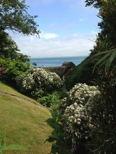 Shanklin Chine Isle Of Wight, Country Roads, Island, Beautiful, Islands