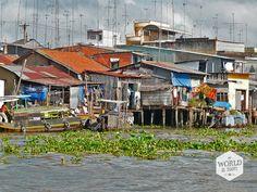 De boot bromt verder over de kanalen en de aftakkingen van de Mekong. Alleen de onderkant van de houten benen van de rieten en golfplaten huisjes raken het bruingrijze water van de rivier. Het is niet voor te stellen dat het Mekongwater ooit de vloeren zal bereiken. De schijn van het laagtij, want zelfs over een uur of twee staat het water al een meter hoger. http://www.myworldisyours.nl/places/mekong-delta #reizen #Vietnam #Mekong #delta #travel