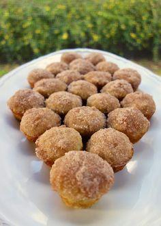 Mini Applesauce Muffins --- Plain Chicken