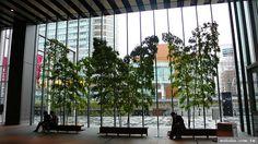 竹 造景 - Google 검색