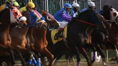 Saturday was the last day of racing at Laurel Park racetrack this year, and those who work and live there fear that it may be the last day ever. An industry that has been ailing in Maryland for years appears as close as ever to death. Horse Racing, Maryland, Riding Helmets, Death, Horses, Park, Live, Parks, Horse