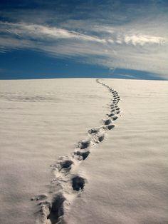 Footprints - Hľadať Googlom