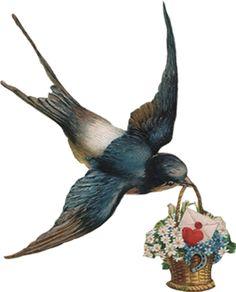 Een zwaluw maakt nog geen zomer, maar wel een teken dat het lente is. Hoera!!!! King Louie - great fashion label from NL