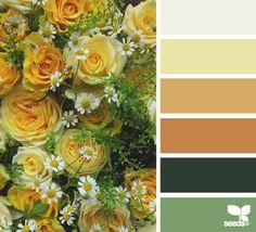 flora hues color palette from Design Seeds Colour Pallette, Colour Schemes, Color Combos, Color Patterns, Best Color Combinations, Design Seeds, Pantone, Palette Design, Color Balance