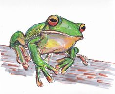 Frog by WhimsicalWags on Etsy