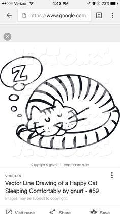 10 Best Cats Images On Pinterest