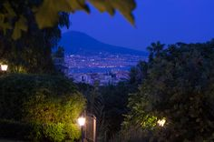 #Matrimonio a tema provenzale organizzato nella nostra location. www.laterradegliaranci.it