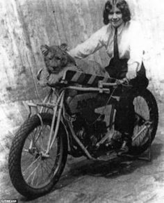 I've posted a few of riders with their dogs, but this is different.... Marjorie Dare with a lion at the Wall of Death, 1930s