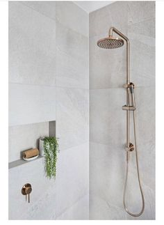 Meir's Round Champagne Shower Rail Set is the latest design to hit Australia. With the Shower head, this champagne shower set will amaze. Bathroom Renos, Laundry In Bathroom, Bathroom Renovations, Bathroom Ideas, Bathroom Cabinets, Ikea Bathroom, Gold Bathroom, Bathroom Plants, Glass Bathroom